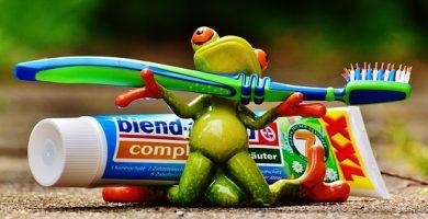 portacepillos de dientes original
